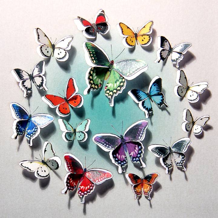 Circle of butterflies (pack of 6)