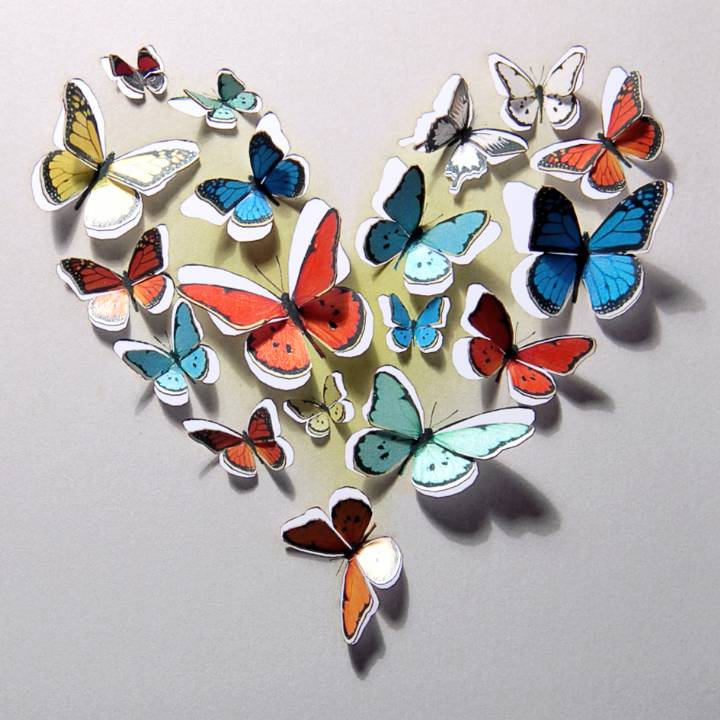 Heart of butterflies (pack of 6)