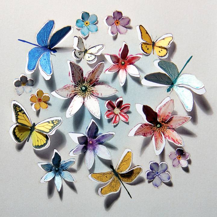 Butterflies and flowers (pack of 6)