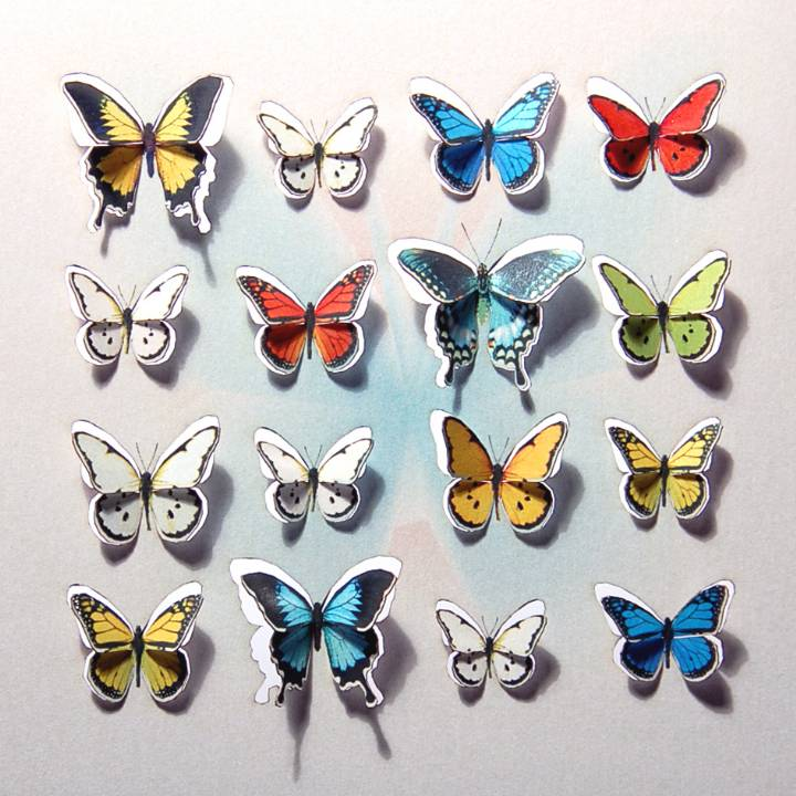 Square of butterflies (pack of 6)