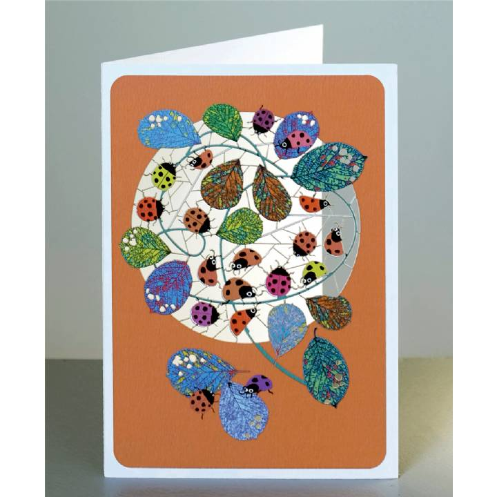 Ladybirds (pack of 6)