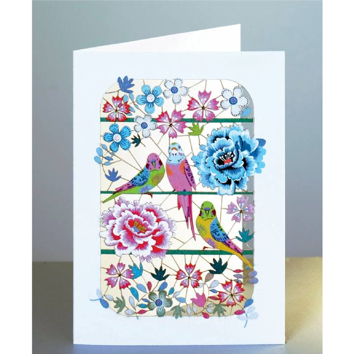 Budgies and peonies (pack of 6)