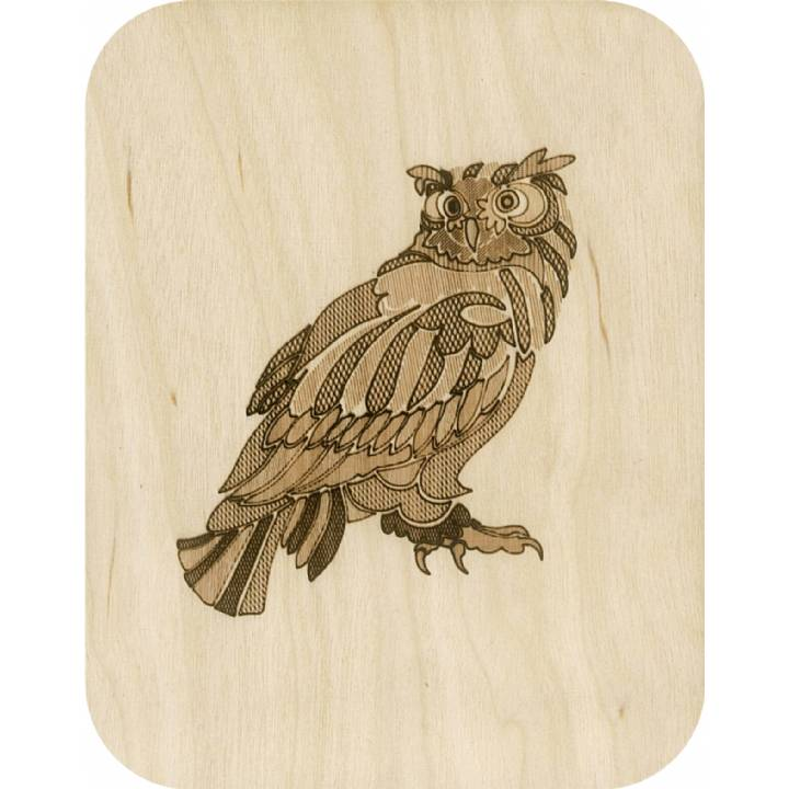 Wooden - big owl (pack of 6)