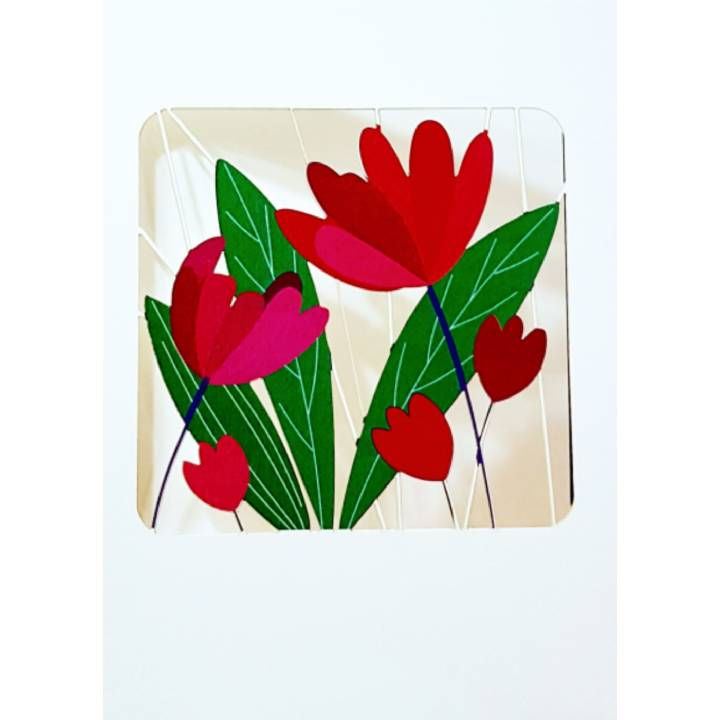 Tulips (pack of 6)