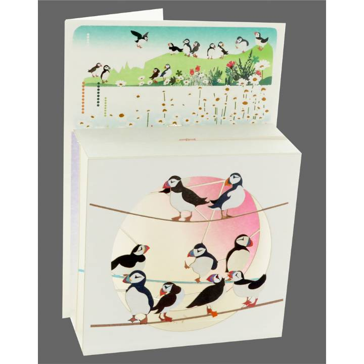 Puffins (pack of 6)