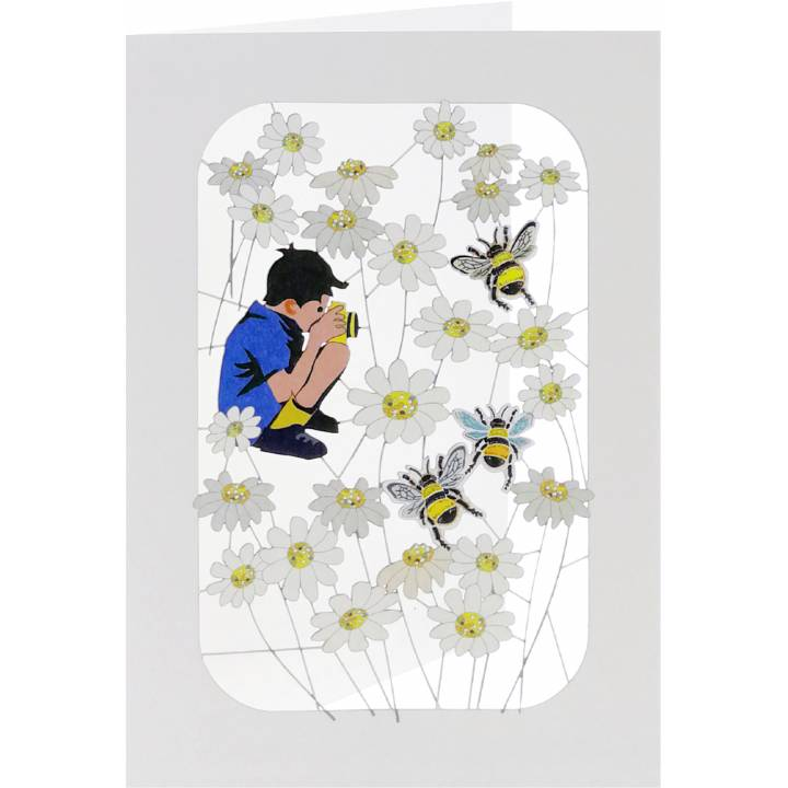 Photographer, bees and daisies (6 Pack)